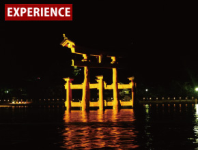 Miyajima night cruise