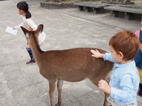 宮島へ行ってきました – その2 –