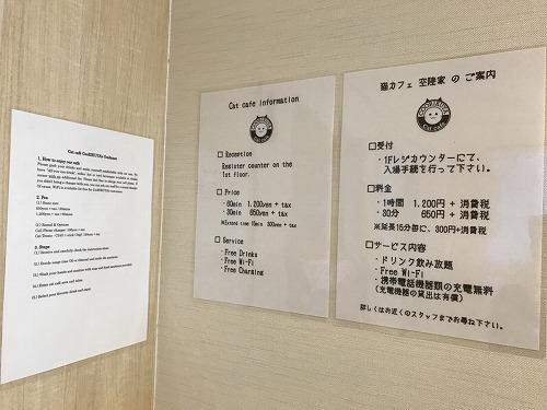 猫カフェ 猫喫茶 空陸家 パート1