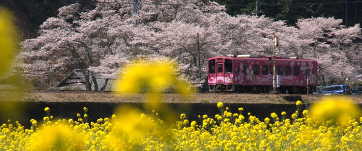 錦川鉄道・錦川清流線