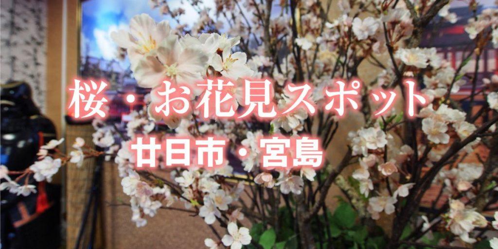 桜、お花見スポット、廿日市、宮島