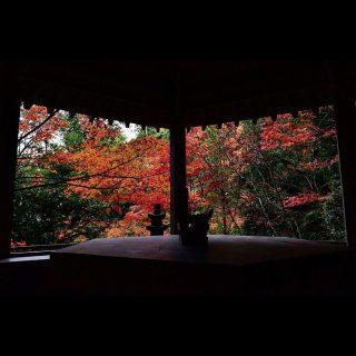 【広島の紅葉オススメスポット】駅近でアクセスも抜群♪『三瀧寺』